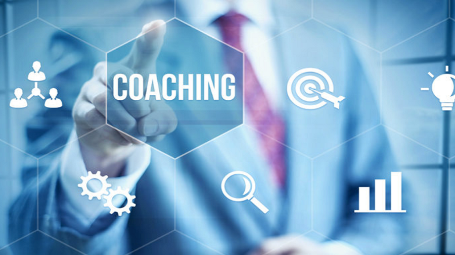 Inspector Course Coaching Package